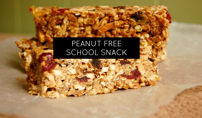 Peanut Free Snack for School